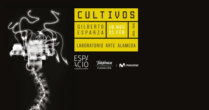 Cultivos (Crops). Gilberto Esparza