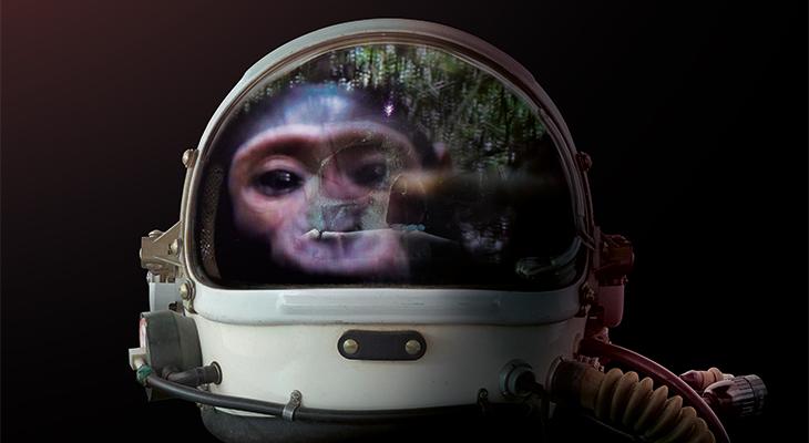 Beyond 2001: Odysseys of intelligence
